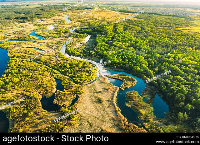 Aerial View Green Forest Woods And River Landscape In Sunny Spring Summer Day. Top View Of Beautiful European Nature From High Attitude In Autumn Season