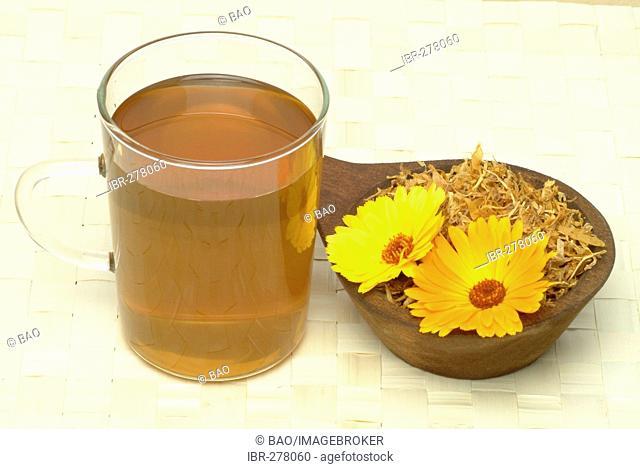 Marigoldtea, Marigold medicinal plant, Calendula officinalis