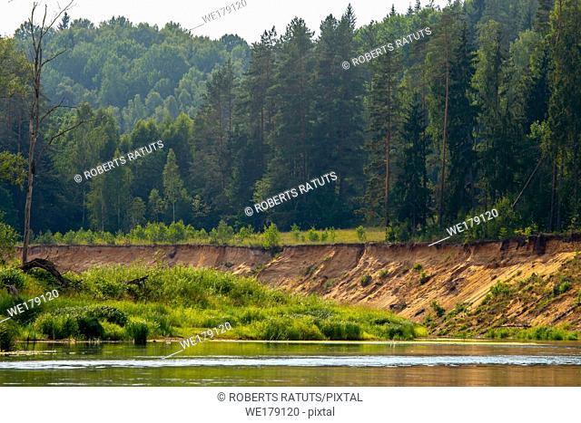 Landscape with little cliff near the river Gauja and forest in the background. The Gauja is the longest river in Latvia, which is located only in the territory...