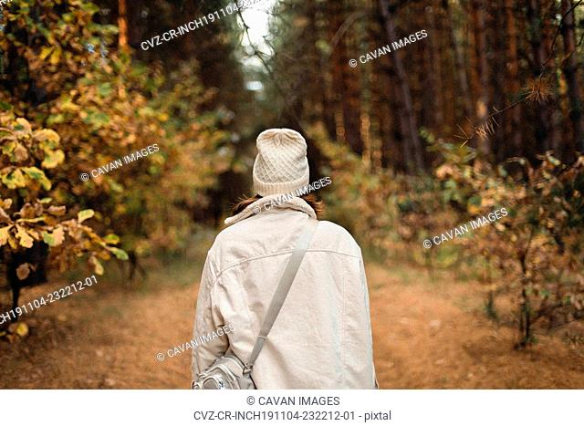 Back view of unrecognizable woman in forest