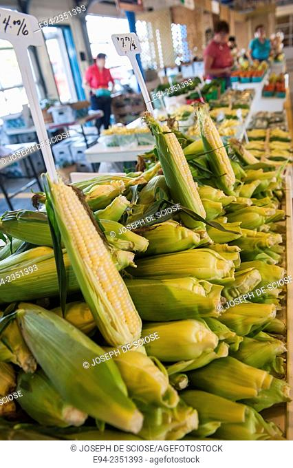 Fresh corn on display inside the farmer's market, Marché du Vieux-Port in Quebec City, Canada