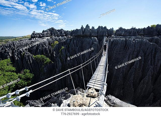 Suspension bridge view, Tsingy de Bemaraha National Park, Madagascar
