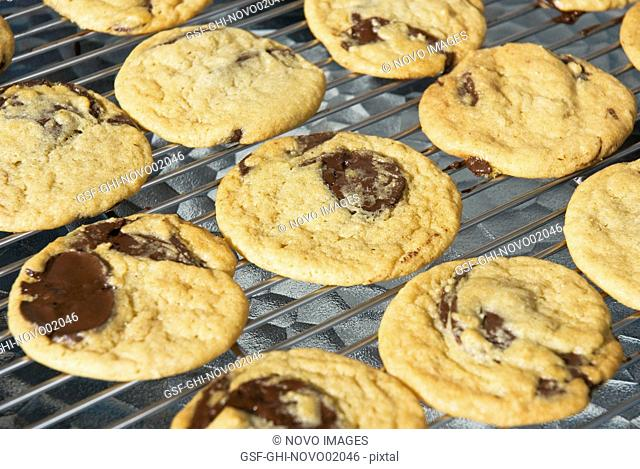 Chocolate Chip Cookies on Cooling Rack, High Angle View