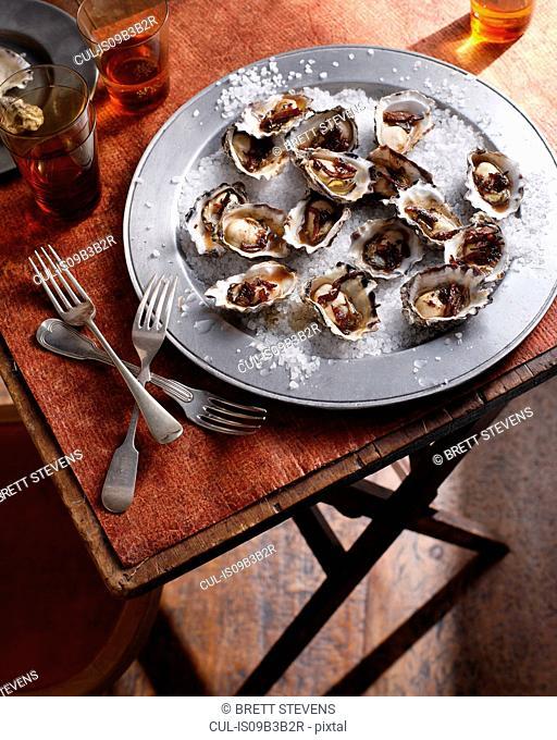 Oysters on sea salt