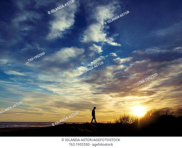 Silhouette of a young man walking by the sea at sunset