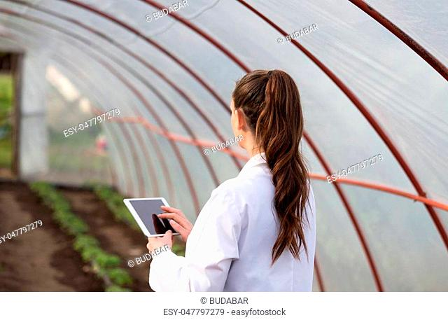 Young pretty woman agronomist holding tablet in greenhouse with tomato seedlings in background