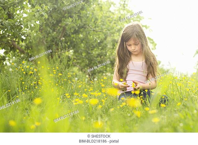 Caucasian girl picking flowers in rural field