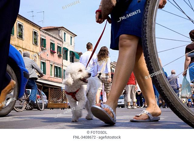 Pedestrians at Corso del Popolo, Chioggia, Italy