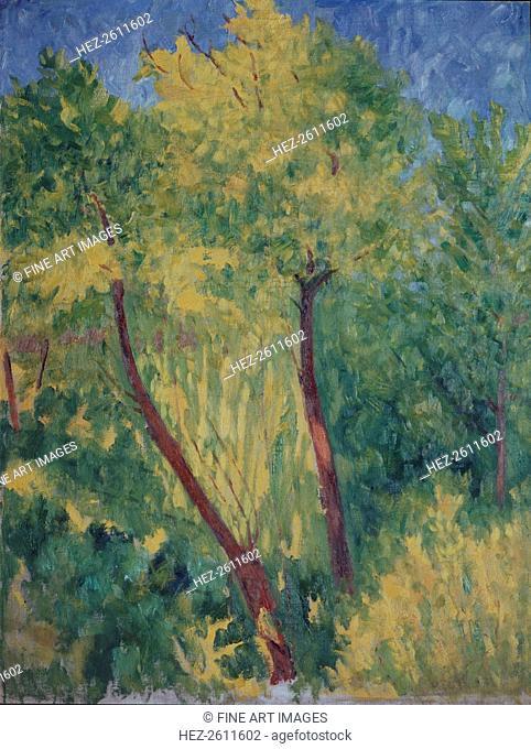 Sunlit trees. Artist: Larionov, Mikhail Fyodorovich (1881-1964)