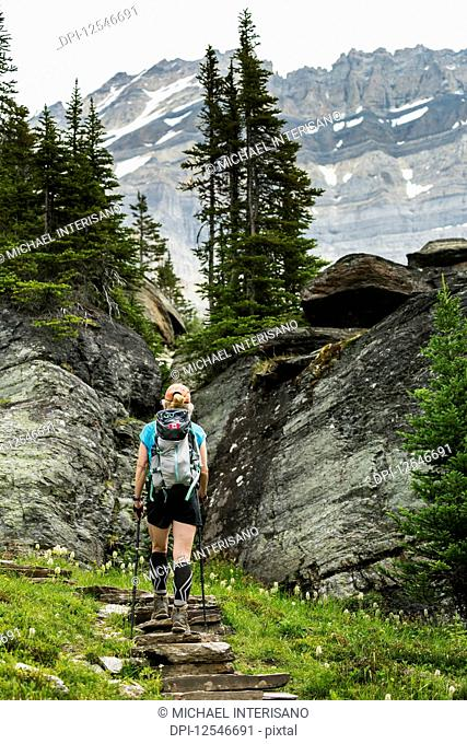 Female hiker assending rock stairs in a mountain meadow with rocky cliffs and mountain in the background; British Columbia, Canada