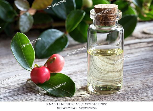 A transparent bottle of wintergreen essential oil on white painted wood, with wintergreen berries and leaves in the background