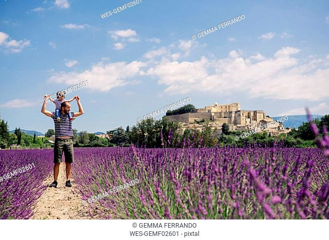 France, Grignan, father standing on foot path between lavender fields with little daughter on his shoulders