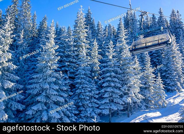 Sunny weather in the winter forest. Cabin of a chair ski lift in the background of snowy fir trees