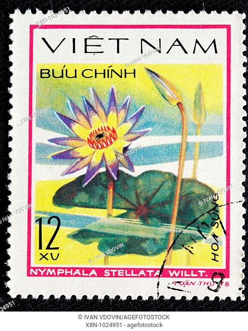 Nymphaea stellata Red and blue water lily, postage stamp, Vietnam, 1978