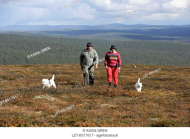 A couple and two West Highland terriers hiking on the fells of Saarsielkä Lapland