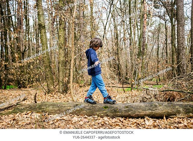 Child playing in the woods walking on a fallen tree