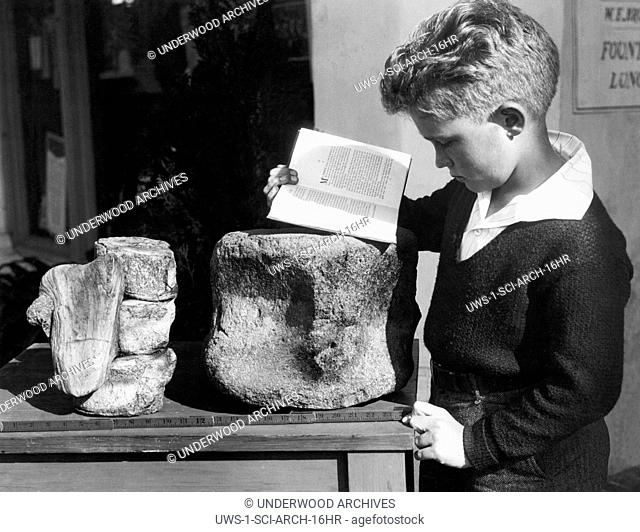 Palos Verdes, California: c. 1927 A young boy studies archeology with the use of a fossilized prehistoric vertebrae found in the nearby hills