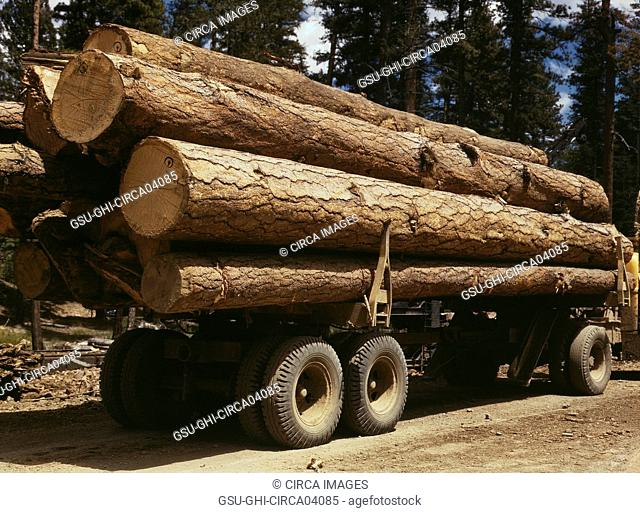 Truck load of Ponderosa Pine, Edward Hines Lumber Co., Malheur National Forest, Grant County, Oregon, USA, Russell Lee for Farm Security Administration - Office...
