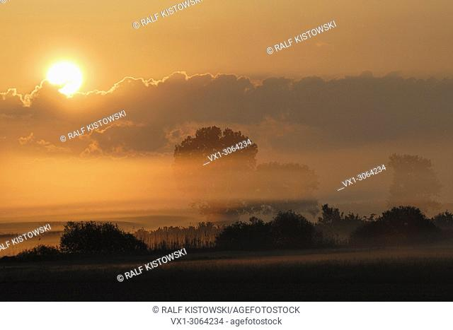 Sunrise above wet meadows and lines of trees and bushes, little bit of morning mist under an orange coloured sky, full of atmosphere