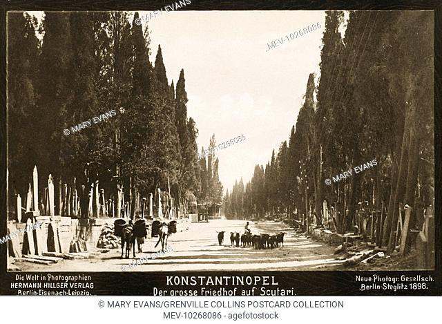 The cemetery at Scutari on the Asian side of the Bosphorus, Constantinople