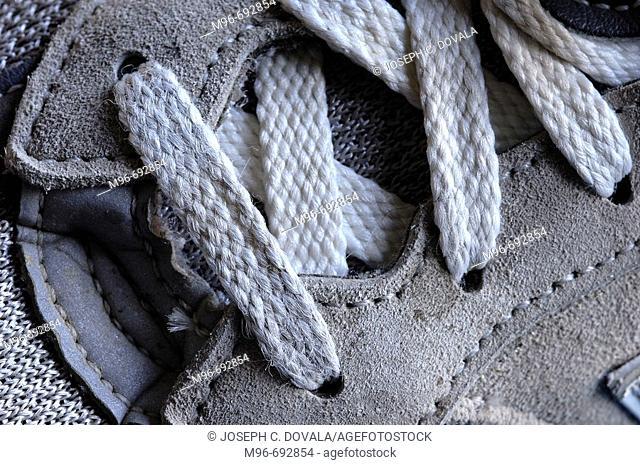 Shoelaces on sneaker