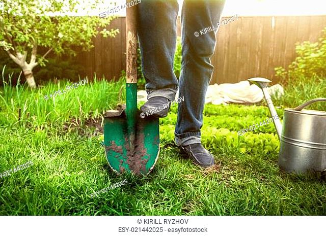man holding foot on shovel at garden at sunny day