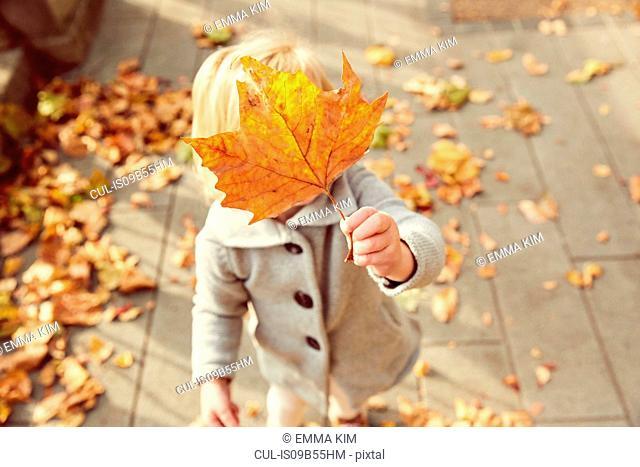 Girl holding autumn leaf in front of face