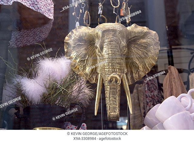 Elephant Head in Shop Window, Old Town; Gamla Stan; Stockholm; Sweden; Europe