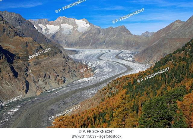 Wannenhorn, Wannenhorns, Aletsch Glacier, Aletsch region, Switzerland, Valais, Alps