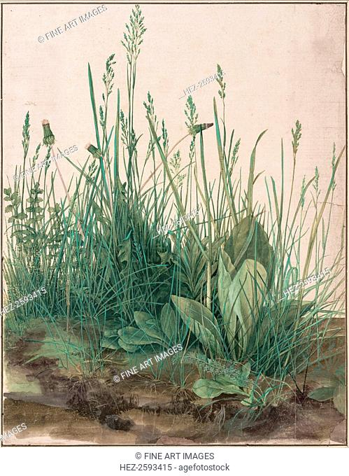 The Large Piece of Turf, 1503. Found in the collection of the Albertina, Vienna