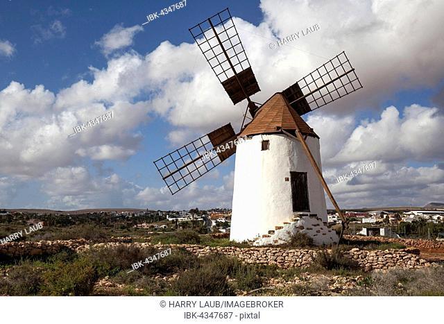 Windmill in La Corte in Antigua, Fuerteventura, Canary Islands, Spain