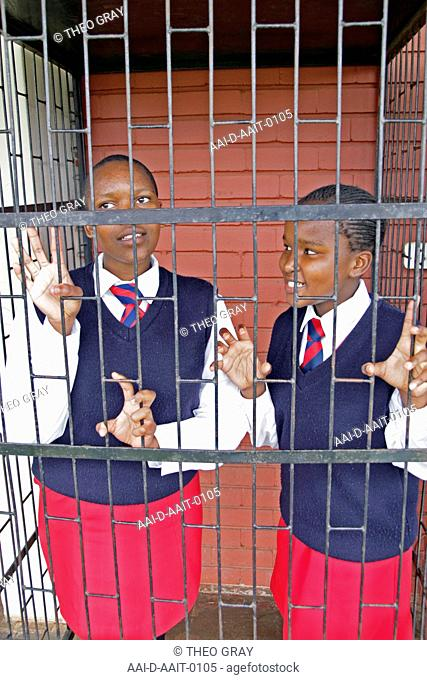 School girls in cage, St Mark's School, Mbabane, Hhohho, Kingdom of Swaziland