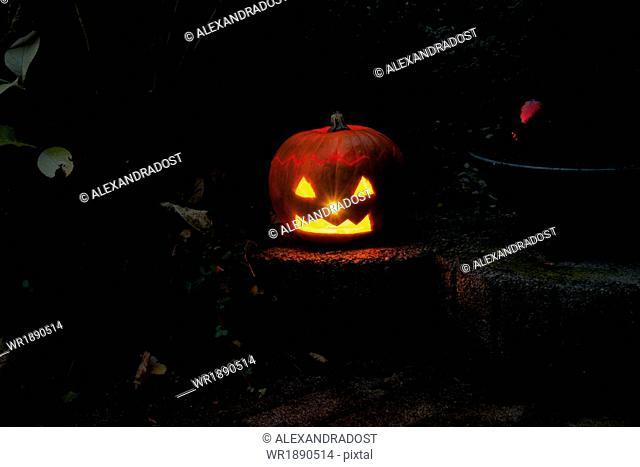 Pumpkin lantern, Jack O'Lantern at Night