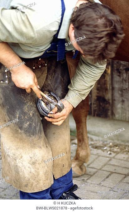 blacksmith working, shoeing a horse, nailing of horseshoe
