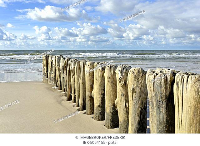 Groynes, wooden piles as breakwaters on the beach near Kampen, Sylt, North Frisian Island, North Sea, North Frisia, Schleswig-Holstein, Germany, Europe