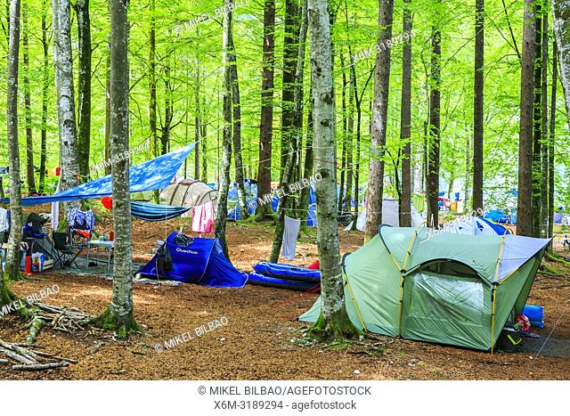 Campsite. Bohinj Glacial Valley. Triglav National Park. Upper Carniola region. Slovenia, Europe