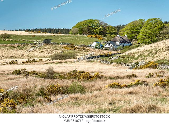 Farmer cottage in a landscape at the Dartmoor National Park, Devon, England, UK