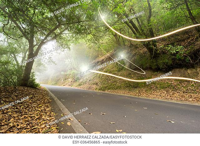 Road in the magic forest, light trails through the myst, fairy tale scenary, version 2