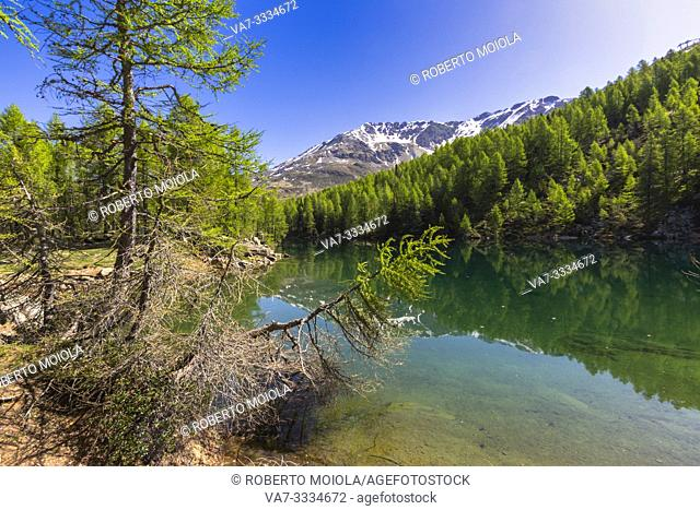 Lago Azzurro during spring, Motta, Madesimo, Valle Spluga, Valtellina, Sondrio province, Lombardy, Italy