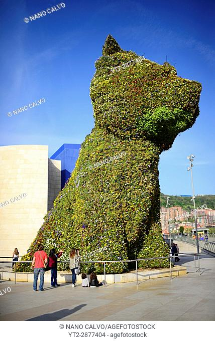 Puppy sculpture by Jeff Koons at the Guggenheim Museum Bilbao is a museum of modern and contemporary art, designed by Canadian-American architect Frank Gehry
