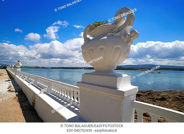 La Toja island Toxa beach flower pot in Pontevedra Galicia Spain