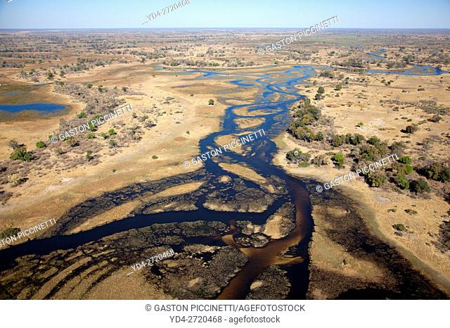 Freshwater marshes with sandy streams and channels. Okavango Delta aerial view, Botswana. The Okavango Delta is home to a rich array of wildlife