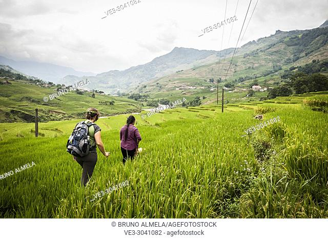 Hiking along rice terraces in Muong Hoa Valley, Sa Pa (Lao Cai province,Vietnam)