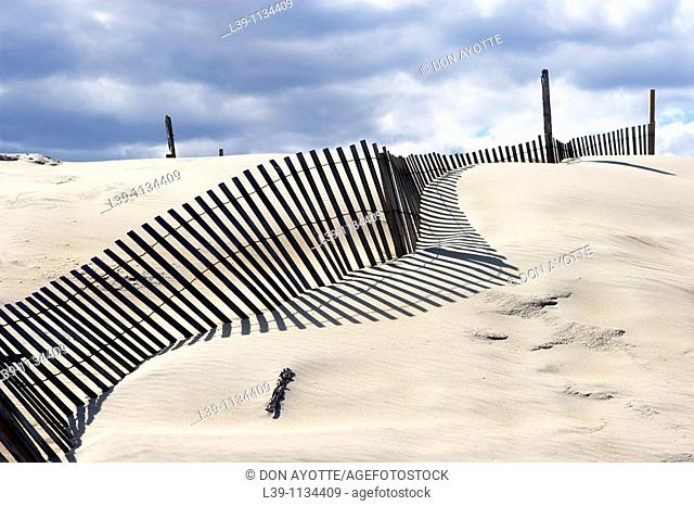 Sand fences. Outer Banks. North Carolina. USA