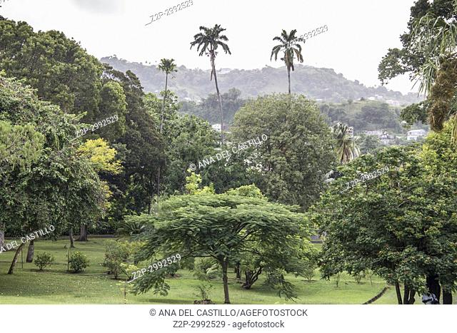 The St Vincent and the Grenadines Botanic Gardens is located in Kingstown on December 7, 2017