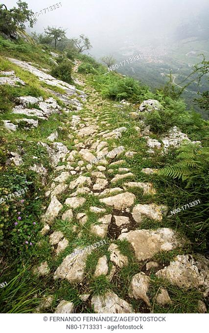 Calzada romana de Caoru  Parque Nacional Picos de Europa  Cabrales  Asturias  Spain