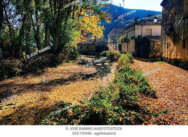 Dulce River. La Cabrera. Castile-La Mancha. Spain