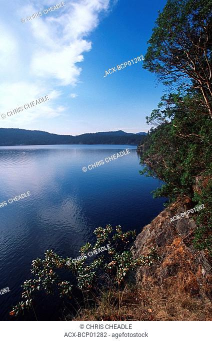 Garry oak and arbutus, Pender Island, Beaumont Park, Gulf Islands National Park, British Columbia, Canada