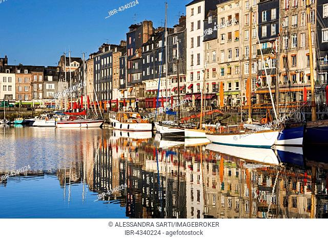 Houses and boats at the old harbor with reflections in calm water, Vieux Bassin, Honfleur, Calvados, Normandy, France