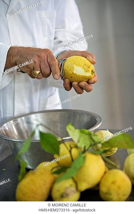 Italy, Campania, Amalfi Coast, listed as World Heritage by UNESCO, Praiano, Il gusto della Costa, limoncello manufacturer local alcohol made with lemon